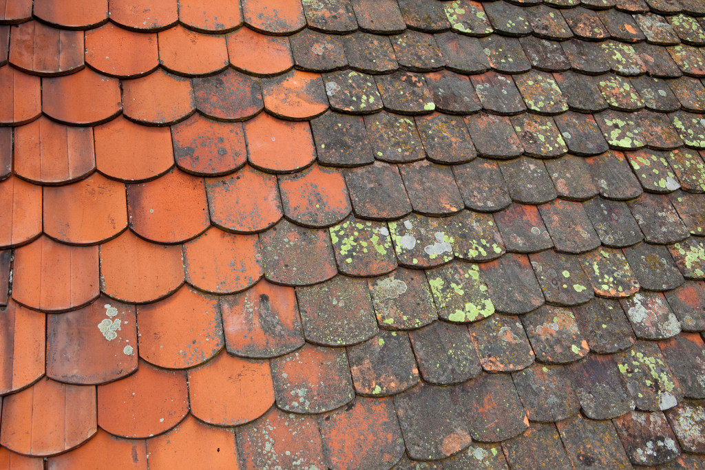 dirty tile roof